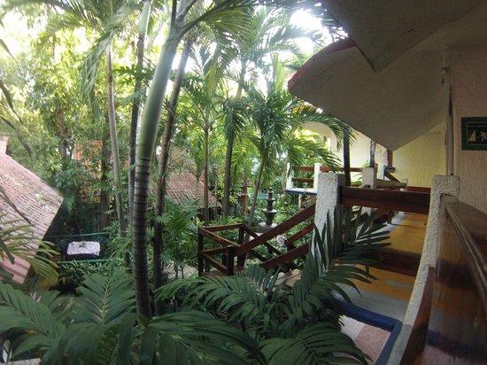 Eco-Hotel El Rey Del Caribe: En sortant de la chambre