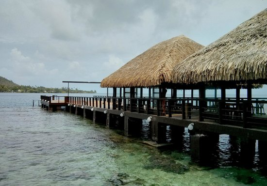 Hotel Kaveka : Pier of the hotel