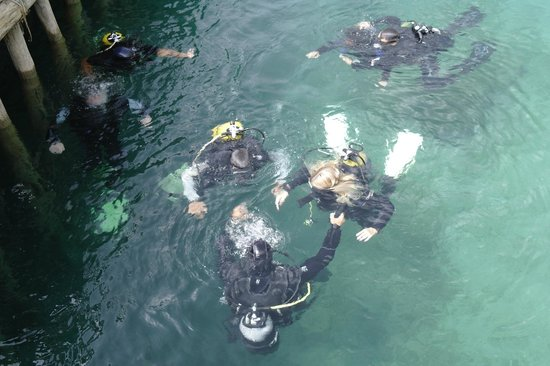 Diving Center Amfora: Taking first time divers for an introduction dive