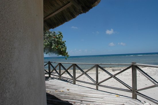 "Oceanic Society Field Station: A view from the deck of the central ""palapa"""