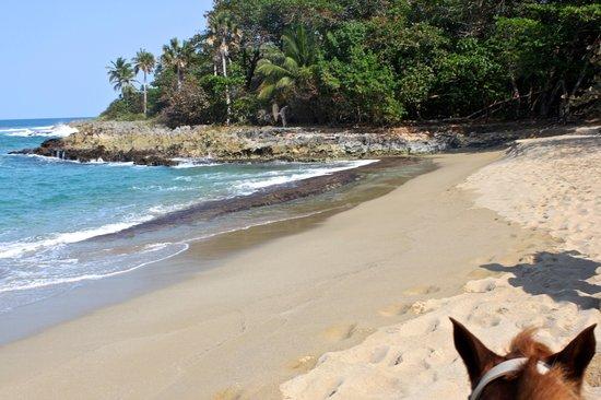 Villas Agua Dulce : Horseback riding along the Hideaway Beach