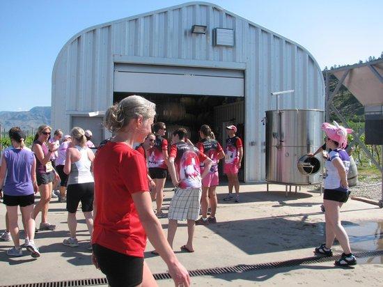 Stoneboat Vineyards: Half Corked Marathon racers at Stoneboat