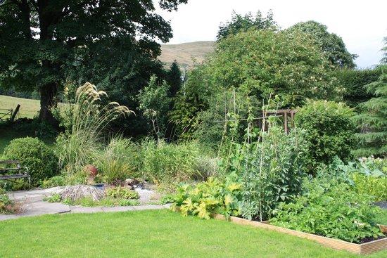 Baldiesburn Bed & Breakfast: Garden with fruit & vegetable plots