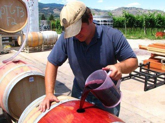 Stoneboat Vineyards: Topping Barrels