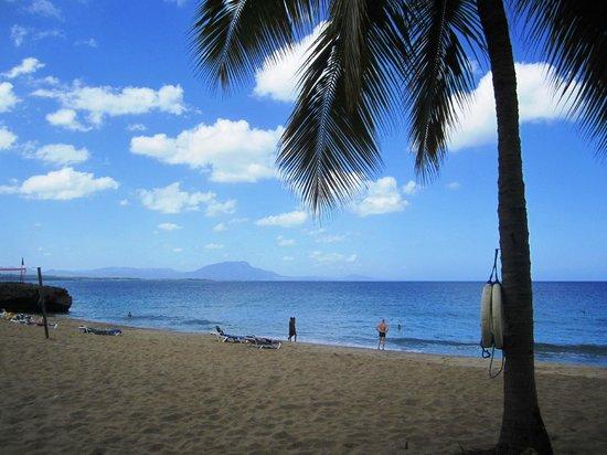 Casa Marina Beach & Reef: Casa Marina Beach