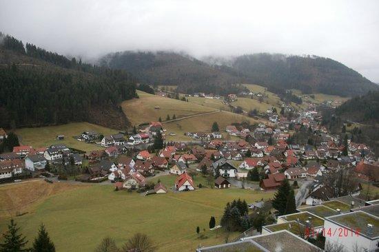 Waldhotel Sommerberg : Vue sur la Forêt Noire