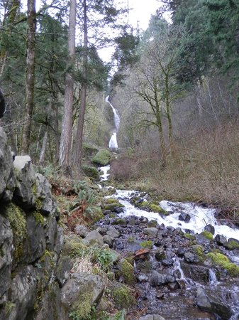 Columbia River Gorge National Scenic Area: Falls