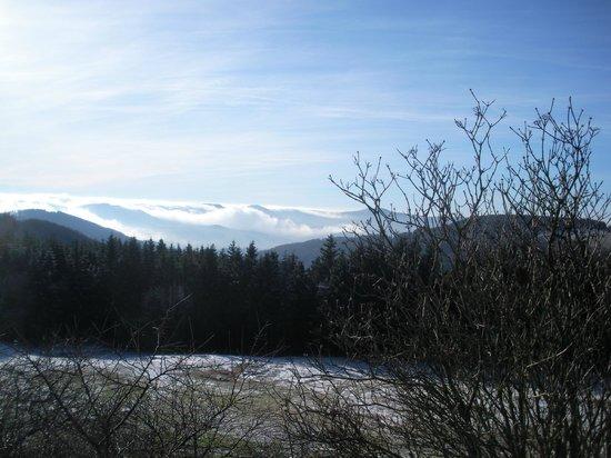 Wasserkuppe Gersfeld: Blick ins weite Tal (Jan. 2014)