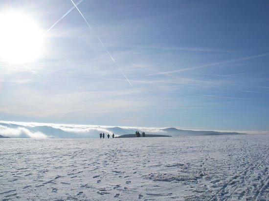 "Wasserkuppe Gersfeld: ""anbrandende"" Nebel"
