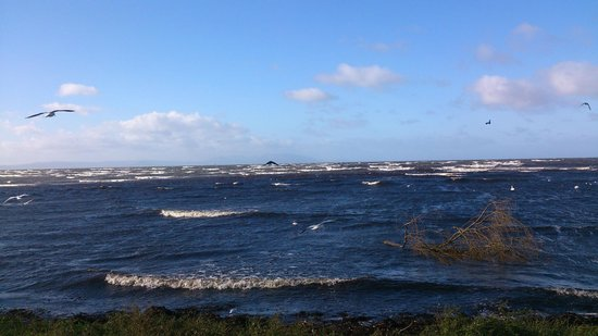 Chalmers Bed & Breakfast Ayr : Ayrshire Coastal Path
