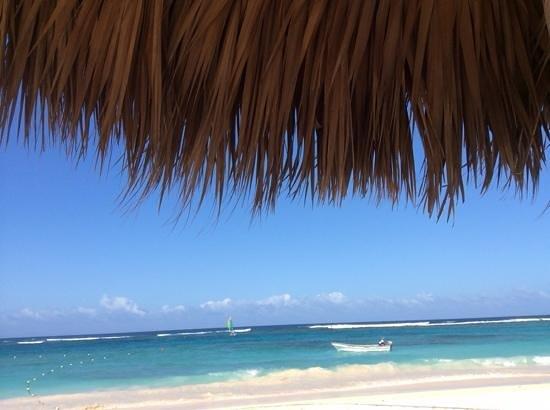 Royalton Punta Cana Resort & Casino: Beautiful beach