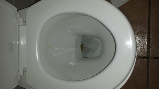 The Lansdowne Hotel: Not the standard of cleaning anyone should expect