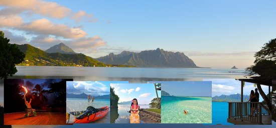 Paradise Bay Resort Hawaii : Escape to the Windward Side