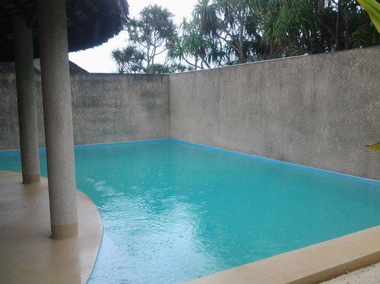 Surfside Vanuatu : our pool