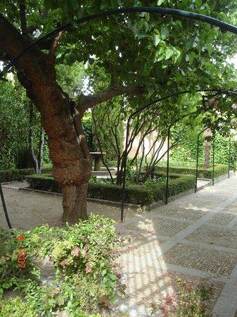 Relax fotograf a de jard n el huerto de calixto y melibea salamanca tripadvisor - Jardin de calisto y melibea salamanca ...