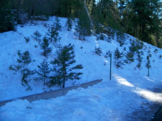 Mt. Lemmon Scenic Byway : Some snow left