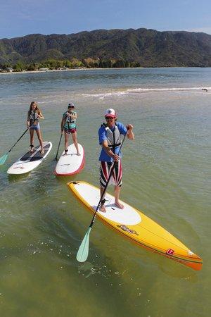 Abel Tasman Paddleboarding: Just cruising
