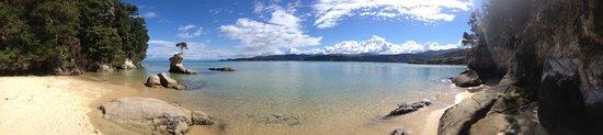Abel Tasman Paddleboarding: One tree rock