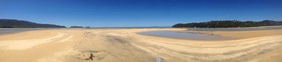 Abel Tasman Paddleboarding: Wow this is sweet as !!!