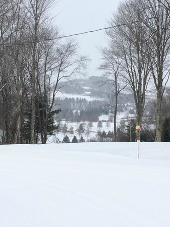 Villa Roma Resort and Conference Center : View from the top of the slopes