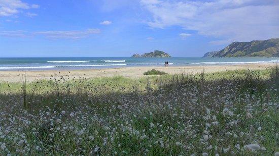 Rangimarie Beachstay: beach