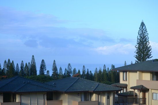 The Kapalua Villas, Maui: View from the patio