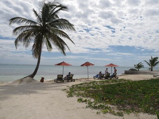 Grand Caribe Belize Resort and Condominiums : Sitting and looking out at the beautiful blue sea!
