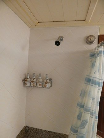 Seaview Patong Hotel: Notice dirty trap door above shower