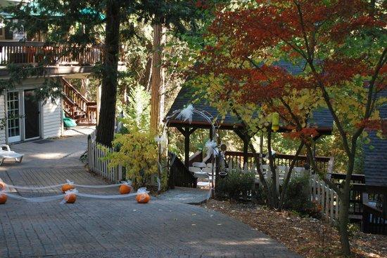 McCaffrey House Bed and Breakfast Inn : Lovely autumn setting!
