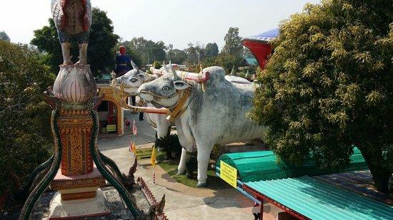 Wat Phra That Rueang Rong