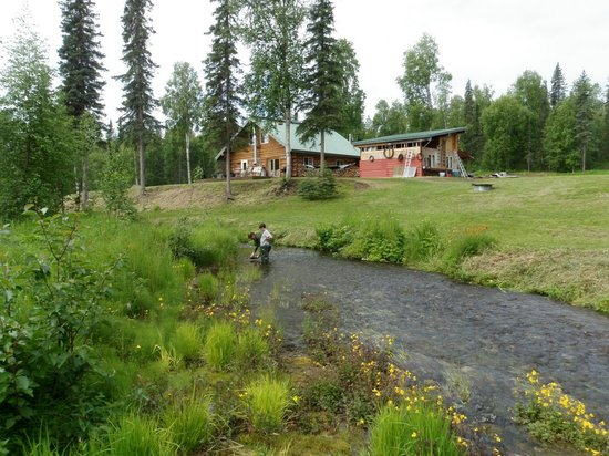 Alaska Wilderness Adventure: creek view