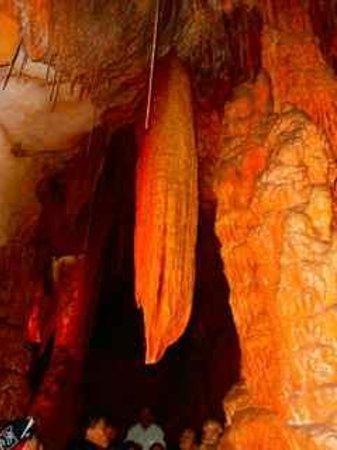 Mole Creek Caves: Corn on the cob shape?