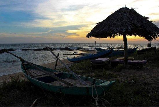 Mango Bay Resort : Sunset on the beach