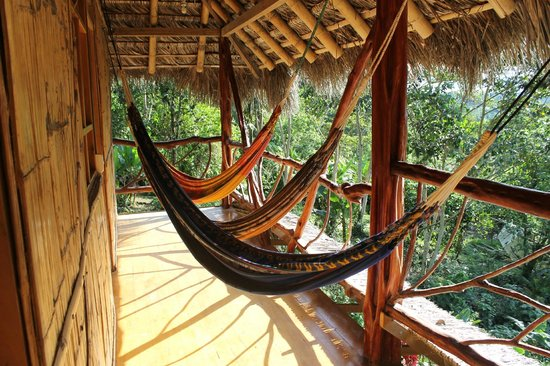 hammocks - Photo de Hostal Pakay, Tena - TripAdvisor