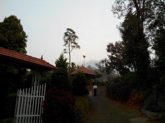Birds Valley Resorts Munnar: Hotel