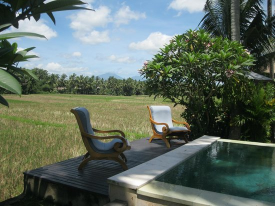 Lodtunduh Sari: rice paddy and pool