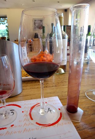 Uncorking Argentina Private Tours : Wine mixing at Renacer