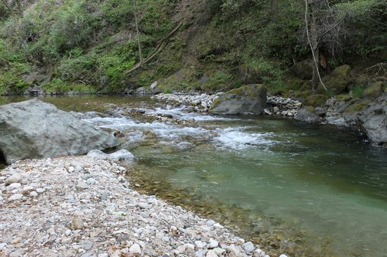 "Glen Oaks Big Sur: Our own ""private"" river"