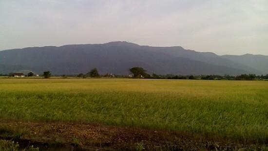 [Image: scenery-of-gunung-jerai.jpg]