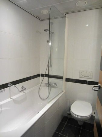 Swissotel Amsterdam : Small bathroom high tub