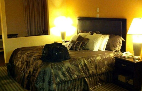 Super 8 Moore Oklahoma City Area: King Bed in room 101