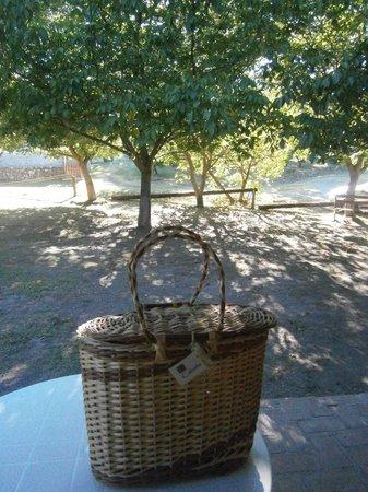 Cabanas Trancas y Barrancas: La canasta cada mañana con nuestro desayuno