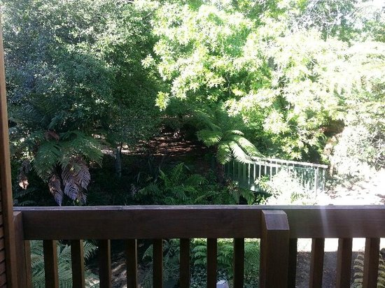 BEST WESTERN Braeside Rotorua: View from the room