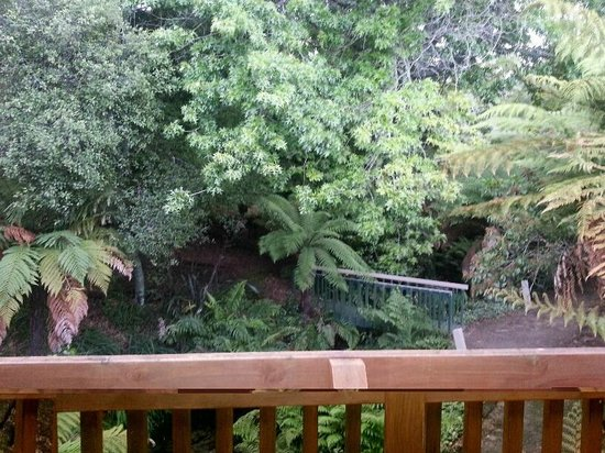 BEST WESTERN Braeside Rotorua: Quite and peaceful
