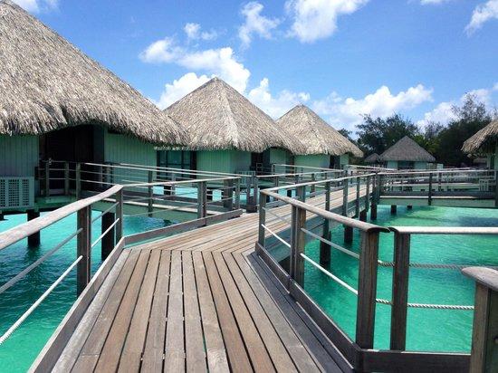 Le Meridien Bora Bora: Route to our room.