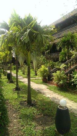 Angkor Spirit Palace : Дворик вокруг отеля