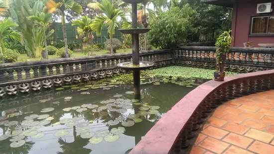 Angkor Spirit Palace : Кувшинки