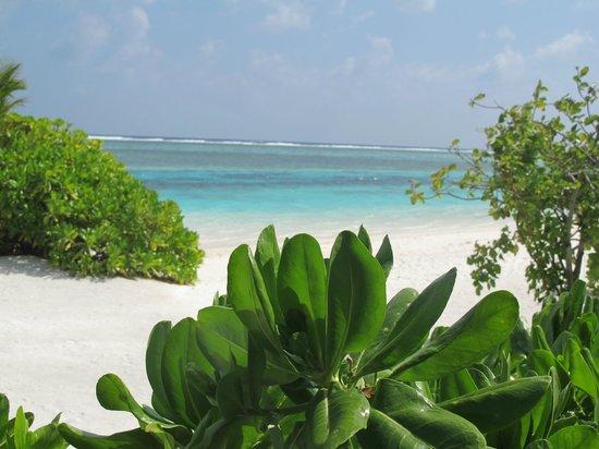 Four Seasons Resort Maldives at Kuda Huraa : Beach