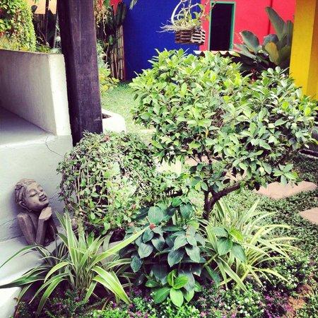 Wok & The Much Rooms: Garden of hostel & restaurant