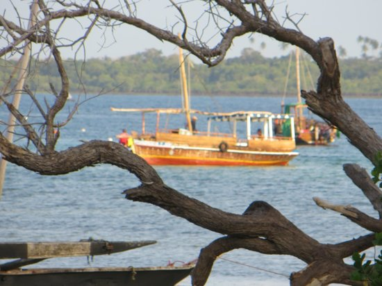 Wasini Island, Kenya: Dhow in the Wasini Channel